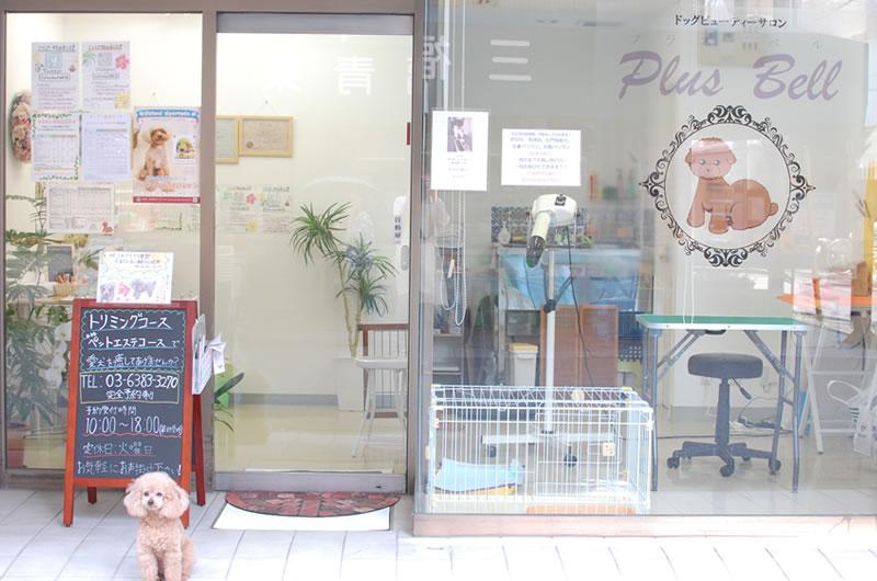 ドッグビューティーサロン、PlusBellの店